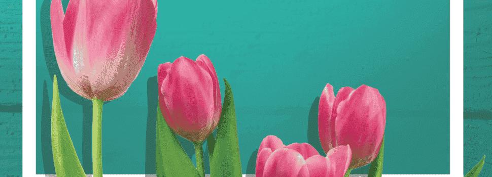 Carta del Editor Abril | Mayo 2017